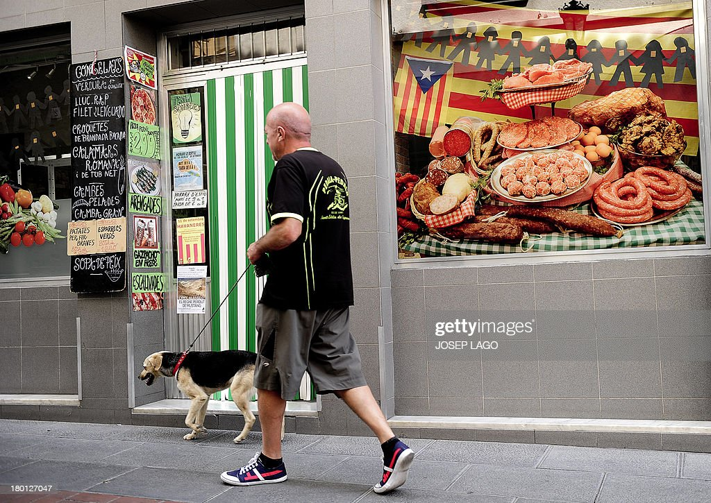A man walks his dog past by a 'Senyera', the Independentist flag displayed on the facade of a little supermarket of Sant Pere de Torrello, near Barcelona on September 9, 2013. As Spain's northeastern region of Catalonia rallies for a 400-kilometre (250-mile) human chain on Spetember 11, 2013 to protest for independence, one sleepy town says it is proudly leading the way to self-rule. Nestled in the valleys of central Catalonia, the town of Sant Pere de Torello symbolically declared itself 'free Catalan territory' on September 3, 2012, the first of dozens of towns and villages to do so across the region.