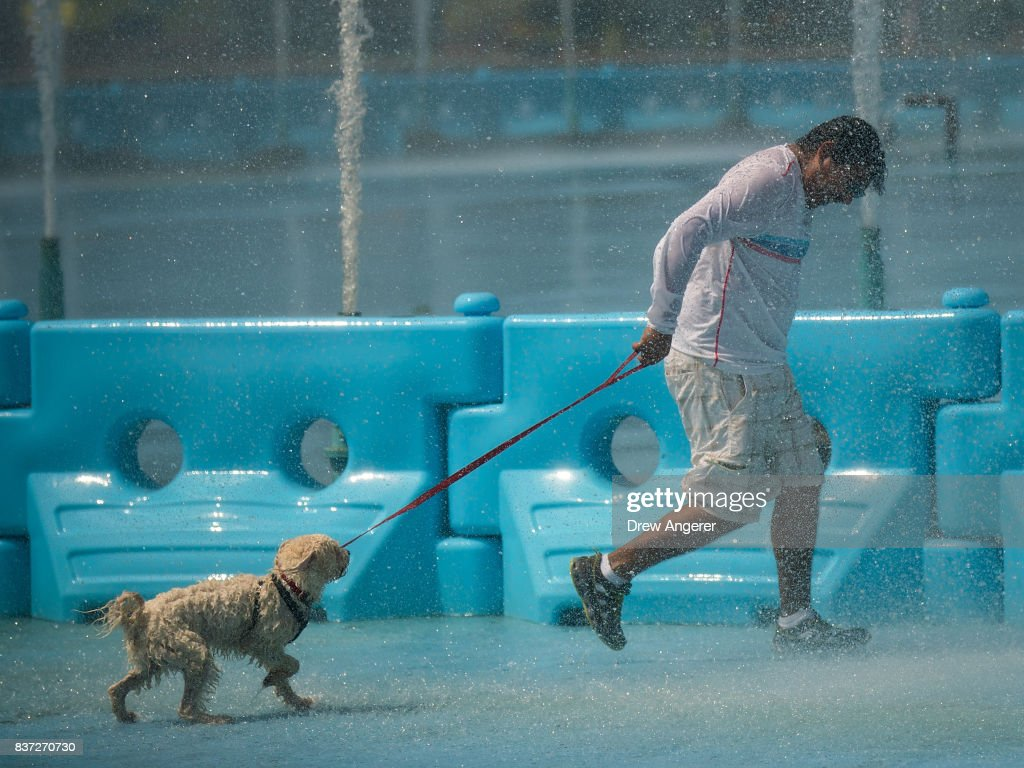 A man walks his dog through the fountains at Flushing Meadows-Corona Park, August 22, 2017 in the Queens borough of New York City. With heat index values near 100, the New York City area is under a heat advisory on Tuesday.