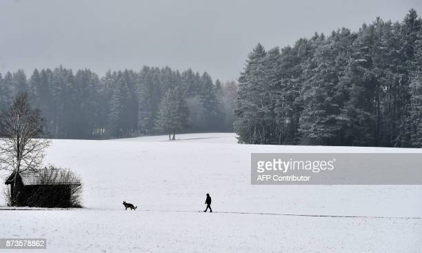 A man walks his dog through the snowcovered landscape near the village of Marktoberdorf southern Germany after a first onset of winter in Bavaria...