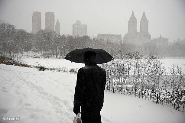 A man walks in heavy snow through Central Park on January 23 2016 in New York City A major Nor'easter is hitting much of the East Coast and parts of...