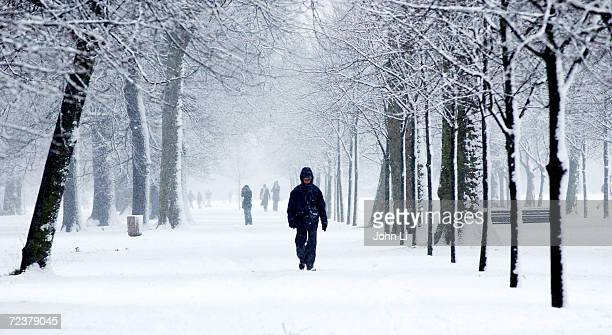 A man walks in Hyde Park during a snow storm January 8 2003 in London United Kingdom Heavy snowfall in the London area has caused chaos on the road...