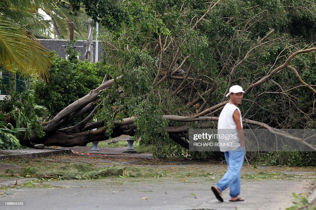 A man walks near a tree which fell on the road, on January 3, 2013 in Saint-Gilles, western part of French overseas' island of La Reunion, after cyclone Dumile lashed Reunion. Winds of up to 180 kilometres per hour (110 miles per hour) and torrential rain caused extensive damage to the electricity network after cyclone Dumile passed within 90 kilometres of the island's west coast at around 0900 GMT. AFP PHOTO / RICHARD BOUHET