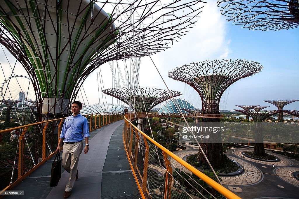 a man walks on the sky walk during a viewing of the supertrees at garden by - Garden By The Bay Marina Bay Sands