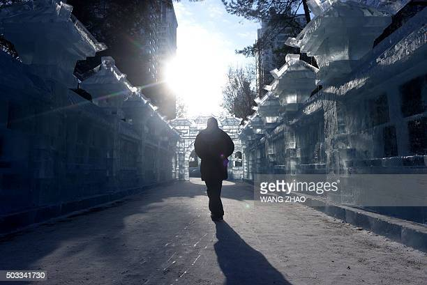 A man walks past ice sculptures at a park before the opening ceremony of the Harbin International Ice and Snow Festival in Harbin northeast China's...