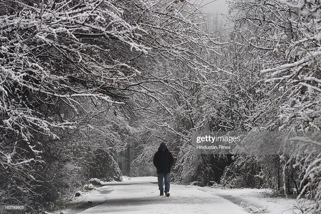 A man walks through a snow covered road in the outskirts of city, on February 27, 2013 in Srinagar, India. Kashmir valley was hit by a fresh spell of rains and snow during the preceding night of February 26 and 27.