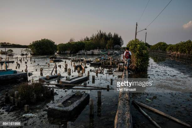 A man walks through the public cemetery which submerged by flood waters from rising sea levels on June 8 2017 in Semarang Indonesia Indonesia is...