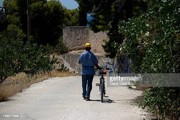 A man walks with his bicycle among pistachio trees in the island of Aegina Greece on June 11 2012 Market stalls piled high with pistachios line the...