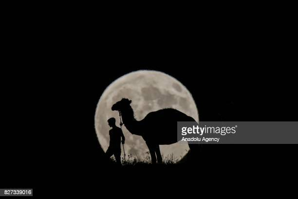 A man walks with his camel during the Partial Lunar Eclipse in Van Turkey on August 7 2017