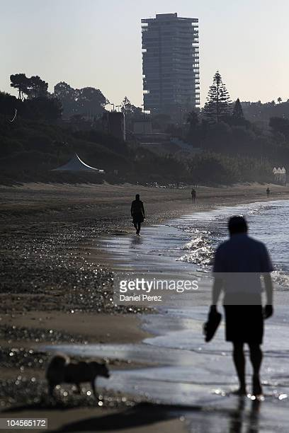 A man walks with his dog along the beach backdropped by the 'Torre Real' apartment building on September 29 2010 in Marbella Spain The 'Torre Real'...