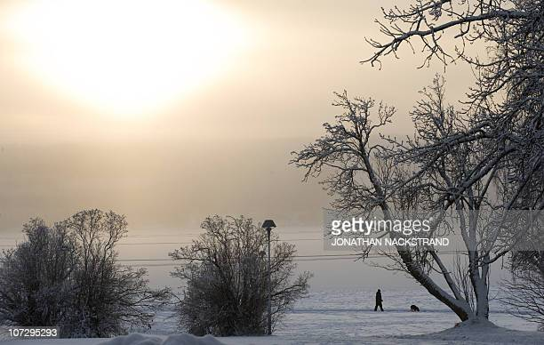 A man walks with his dog in the town of Oestersund northern Sweden on December 3 2010 Fresh snowfalls swept northern Europe shutting down airports...