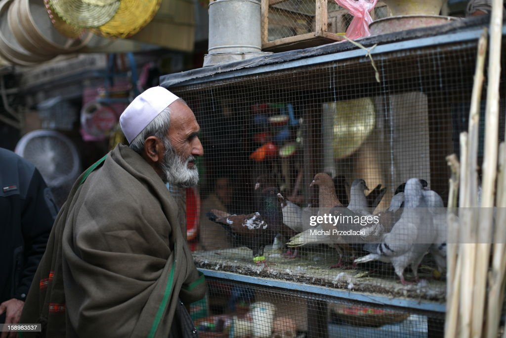 CONTENT] Man watches pigeons for sale. Kabul, Afghanistan, December 2011.