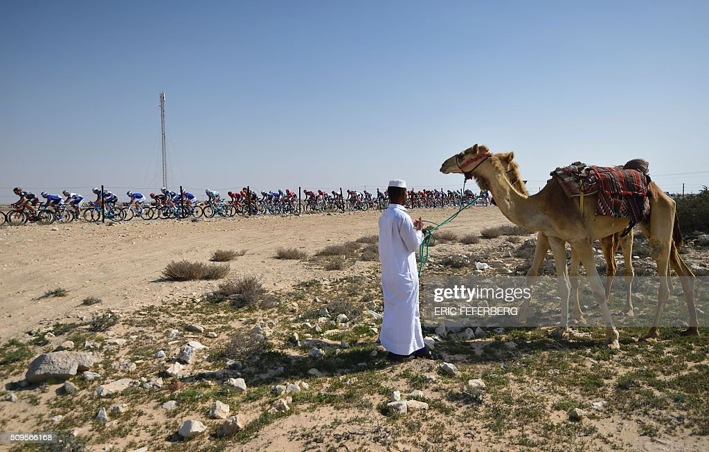 A man watches with his camels the pack passing by in the desert during the fourth stage of the 15th Tour of Qatar between Al-Zubarah Fort and Madinat Al-Shamal on February 11, 2016. / AFP / ERIC FEFERBERG