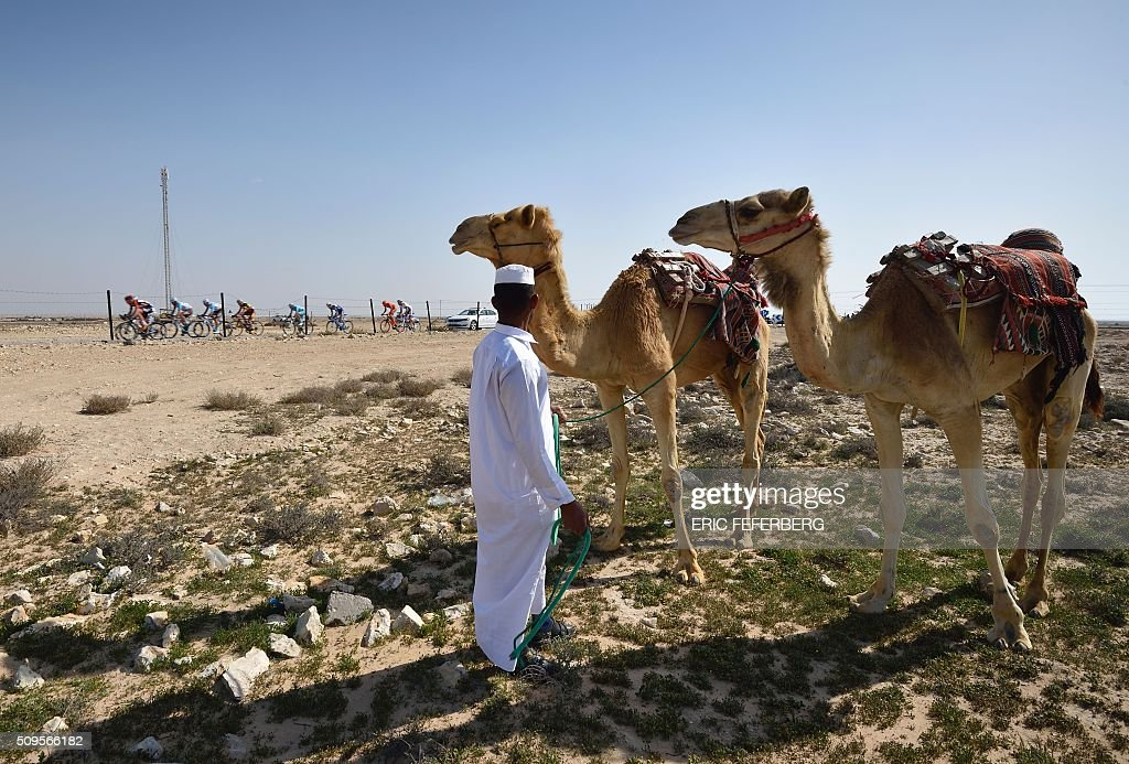 A man watches with his camels the pack passing by in the desert during the fourth stage of the 15th Tour of Qatar cycling race between Al-Zubarah Fort and Madinat Al-Shamal on February 11, 2016. / AFP / ERIC FEFERBERG