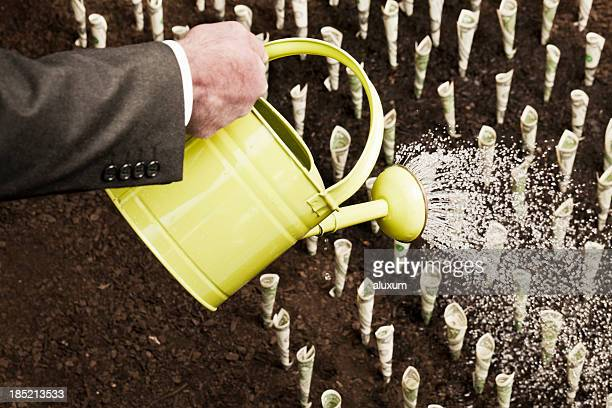 Man watering rows of money expressing growth