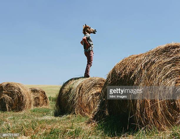 A man wearing a horse mask, standing on a hay bale, looking out over the landscape.