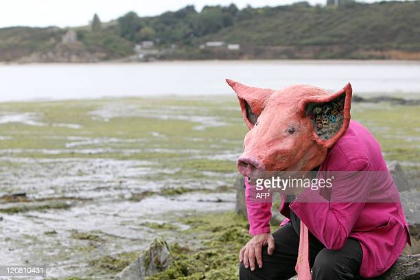 A man wearing a papier mache pig mask sits on a beach strewn with green algae and closed to the public on August 5 2011 in Hillion western France...