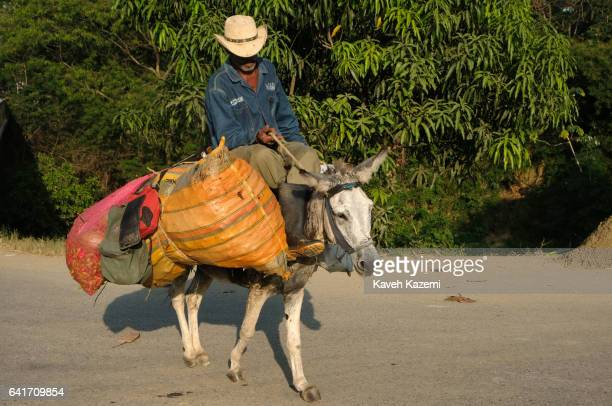 A man wearing a sombrero hat rides home on his donkey with his picked crop on January 28 2017 in San Basilio de Palenque Colombia Centuries ago...