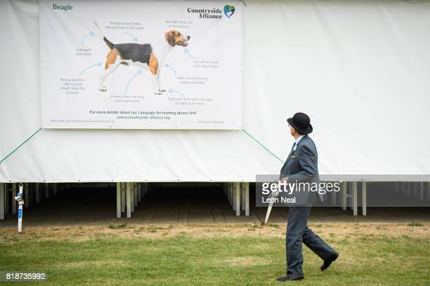 A man wearing a traditional bowler hat looks towards a poster illustrating the judging guidelines for the Beagle breed of dog at the Festival of...