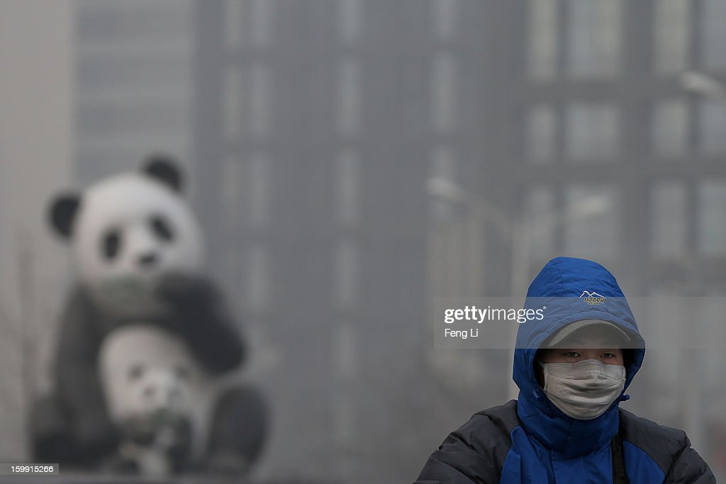 A man wearing the mask rides a bicycle through a panda sculpture during severe pollution on January 23, 2013 in Beijing, China. The air quality in Beijing on Wednesday hit serious levels again, as smog blanketed the city.