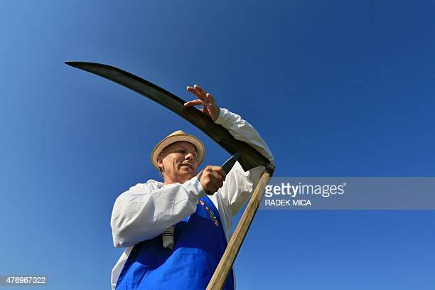 A man wearing traditional clothes sharpens his scythe while working on a meadow to mow in a traditional way in Mala Vrbka South Moravia 80 km...