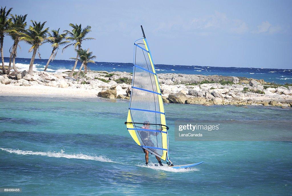 A man windsurfing near the coast on a sunny day