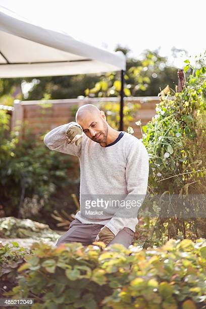 Man wiping sweat form forehead while gardening at yard