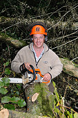 Man with a chainsaw felling trees