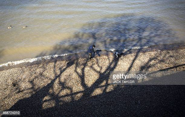 A man with a metal detector tries his luck searching for metal with his dog on the banks of the river Thames in central London on April 6 2015 as...
