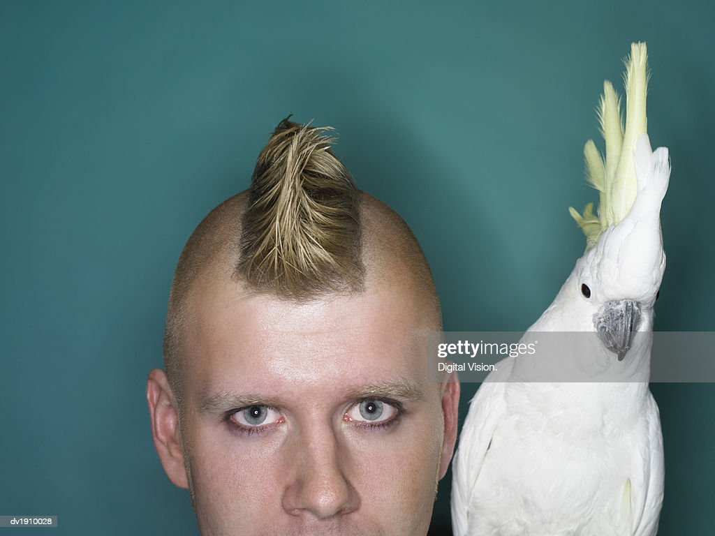 Man With a Mohican Next to a Cockatoo