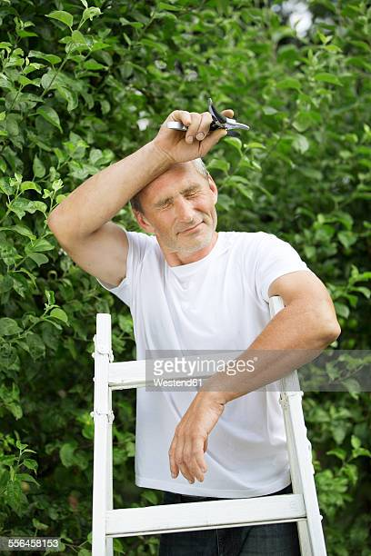 Man with closed eyes standing on a ladder in the garden wiping off sweat
