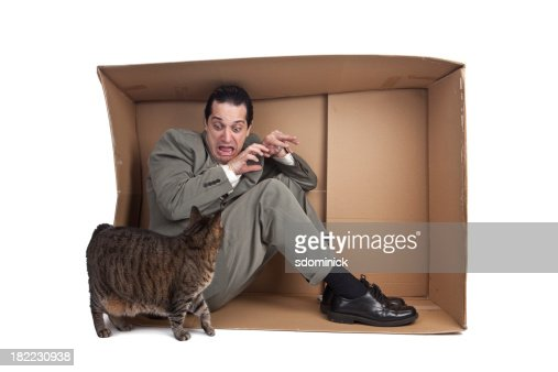 Man With Fear Of Cats