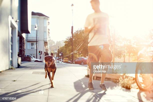 Man with his dog running outdoors