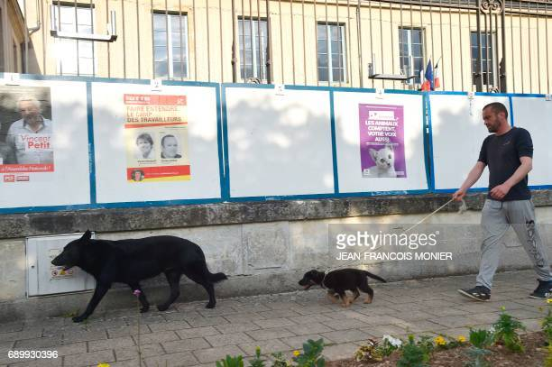 A man with his dogs walks by electoral posters of candidates for the upcoming French parliamentary elections on May 29 2017 in Bonnetable nothwestern...