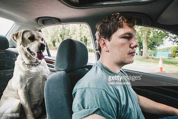 Man with his pet dog sat in a car