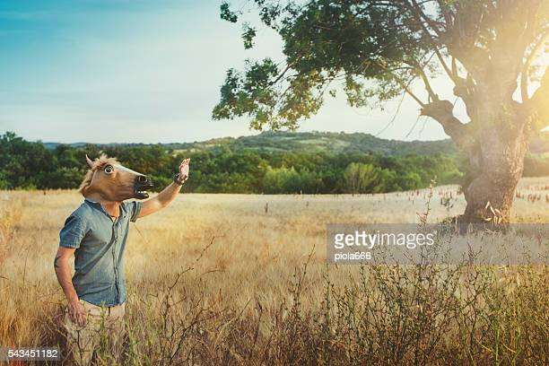 Mann mit Pferdekopf im einem Feld