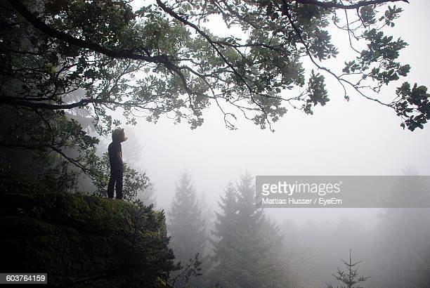Man With Mask Standing On Rock At Forest Against Sky During Foggy Weather