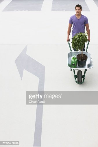 Man with Potted Plant in Wheelbarrow : Stock-Foto