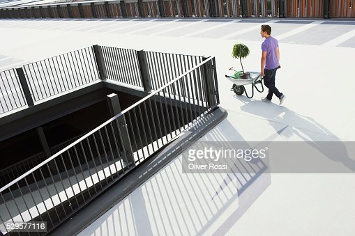 Man with Potted Plant in Wheelbarrow : Stockfoto