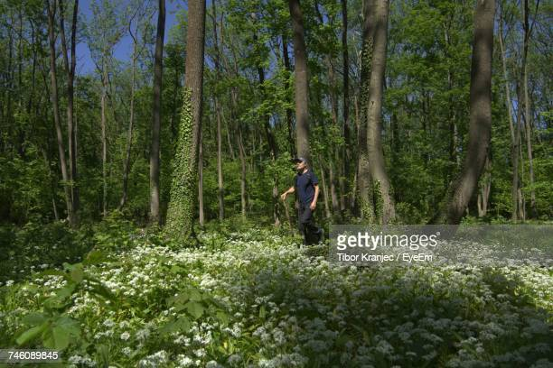 Man With Stick Walking By Flowers At Forest