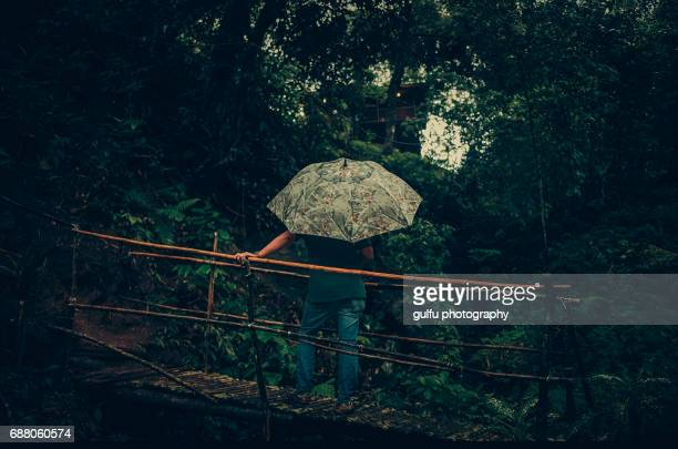 Man  with umbrella looking into the forest