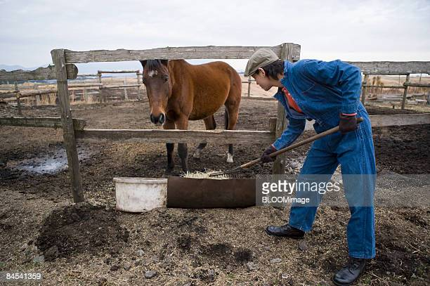 Man working in ranch