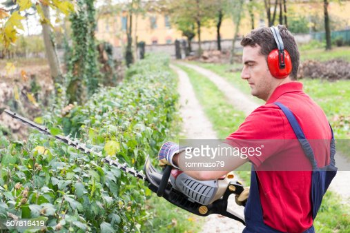 Man working with hedge trimmer : Stock Photo