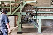 A man works on a machine at the Interval company facilities that processes hemp fibres in ArcLesGray near Dijon central eastern France on July 12...