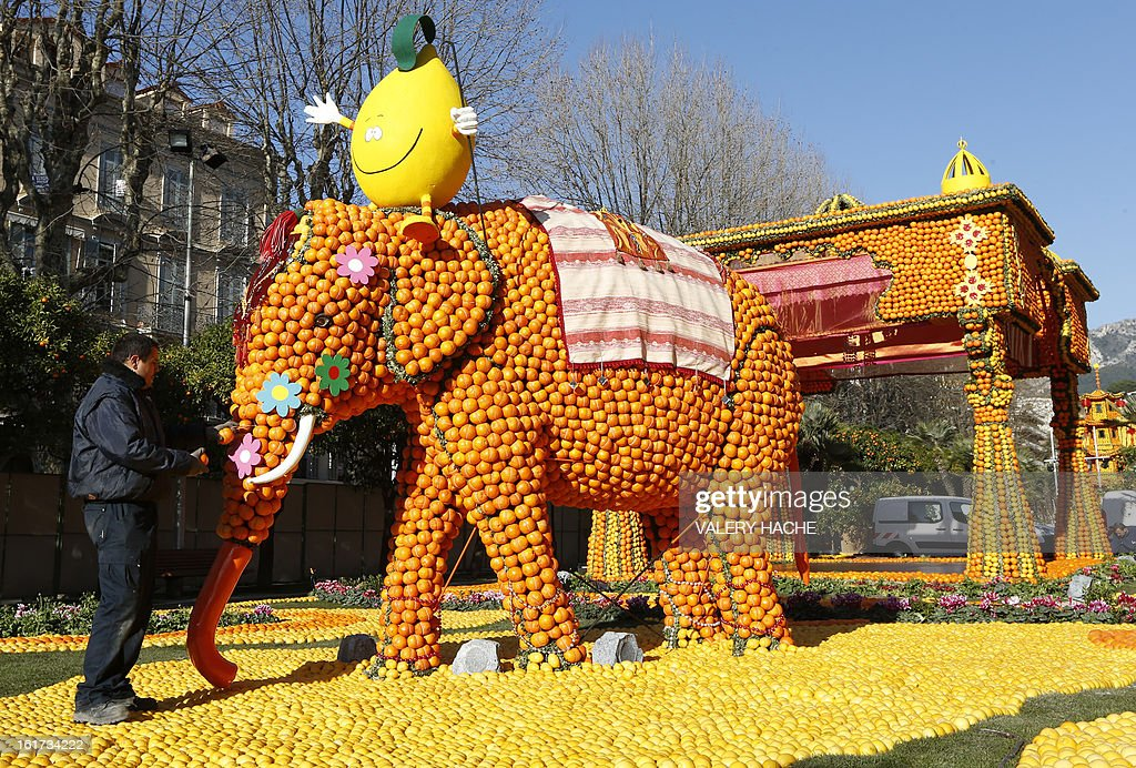 A man works on a sculpture called 'Massif de l'Inde', made of oranges and lemons, on February 15, 2013 in Menton on the French Riviera, ahead of the start of the 'Fete du Citron' (lemon carnival). The theme of this 80th edition, running from February 16 until March 6, 2013, is 'Le Tour du monde en 80 jours' (80 days around the world). AFP PHOTO / VALERY HACHE