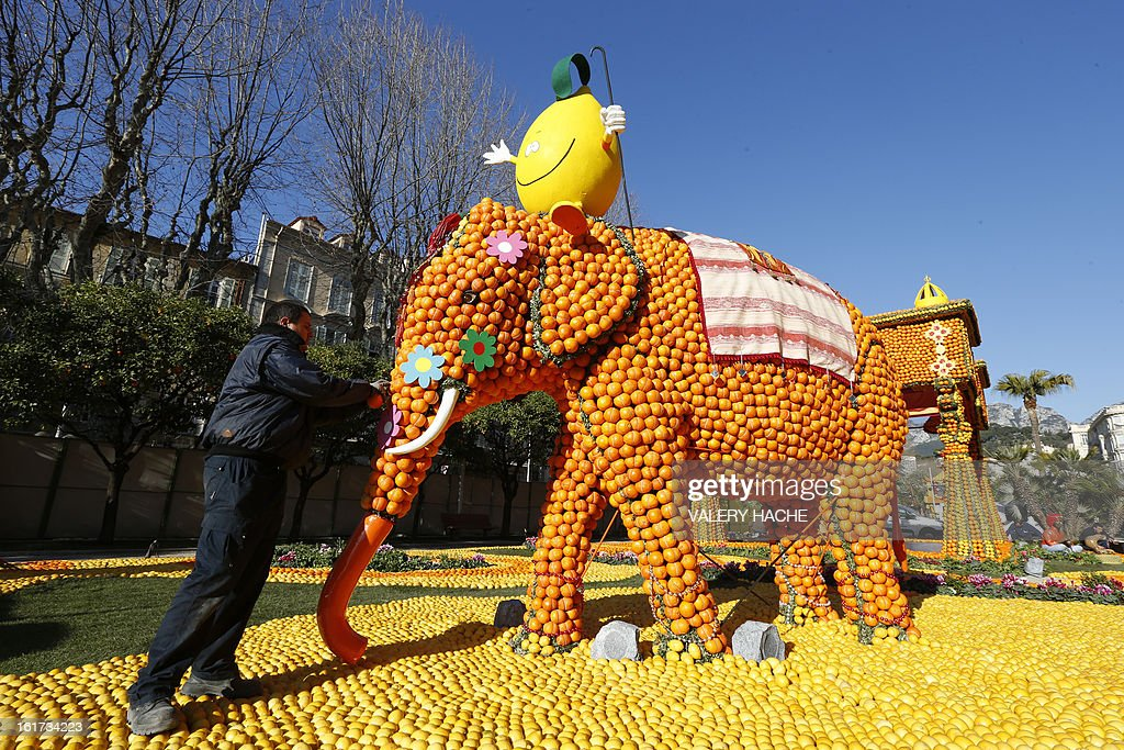A man works on a sculpture called 'Massif de l'Inde', made of oranges and lemons, on February 15, 2013 in Menton on the French Riviera, ahead of the start of the 'Fete du Citron' (lemon carnival). The theme of this 80th edition, running from February 16 until March 6, 2013, is 'Le Tour du monde en 80 jours' (80 days around the world).