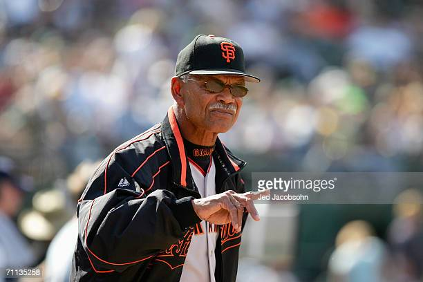 Manager Felipe Alou of the San Francisco Giants looks on against the Oakland Athletics at McAfee Coliseum on May 20 2006 in Oakland California The...