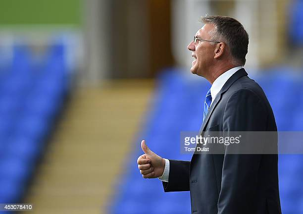 Manager of Reading Nigel Atkins looks on during a pre season friendly match between Reading and Swansea City at The Madejski Stadium on August 02...
