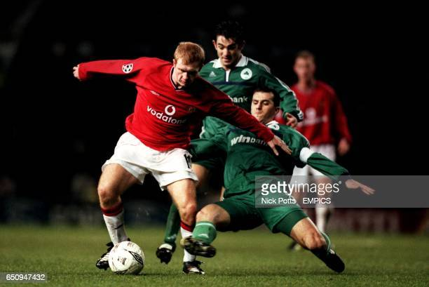Manchester United's Paul Scholes is tackled by Panathinaikos' Ioannis Goumas
