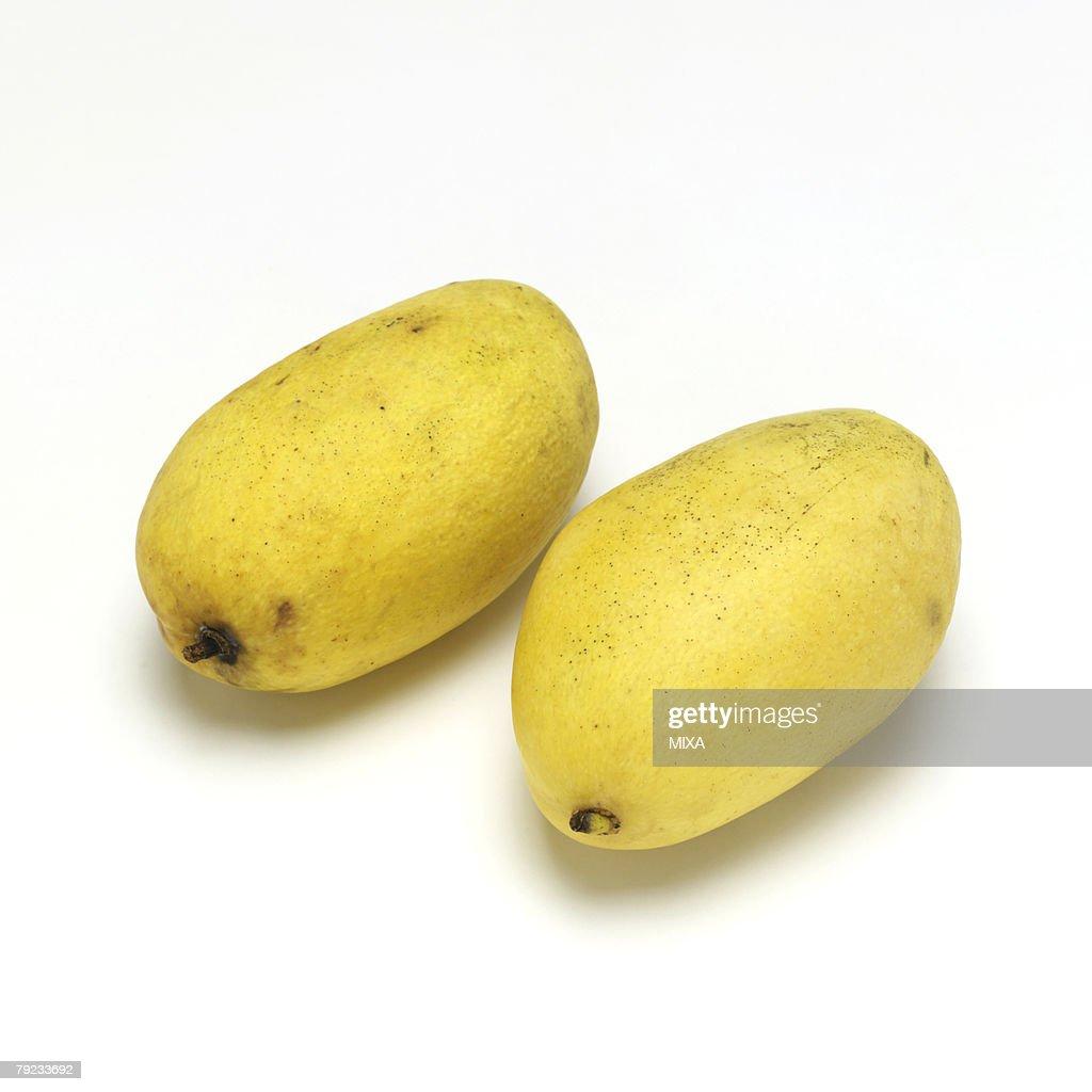 Mango : Stock Photo