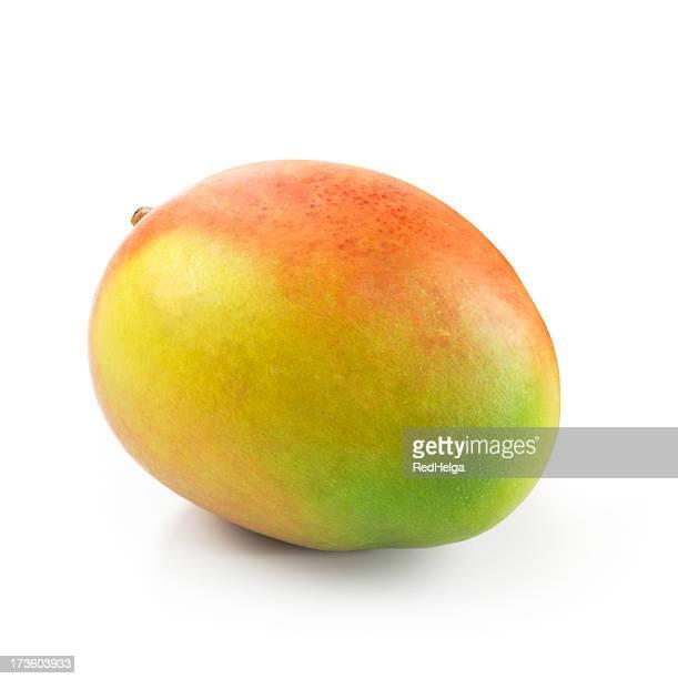 Einziges Mango